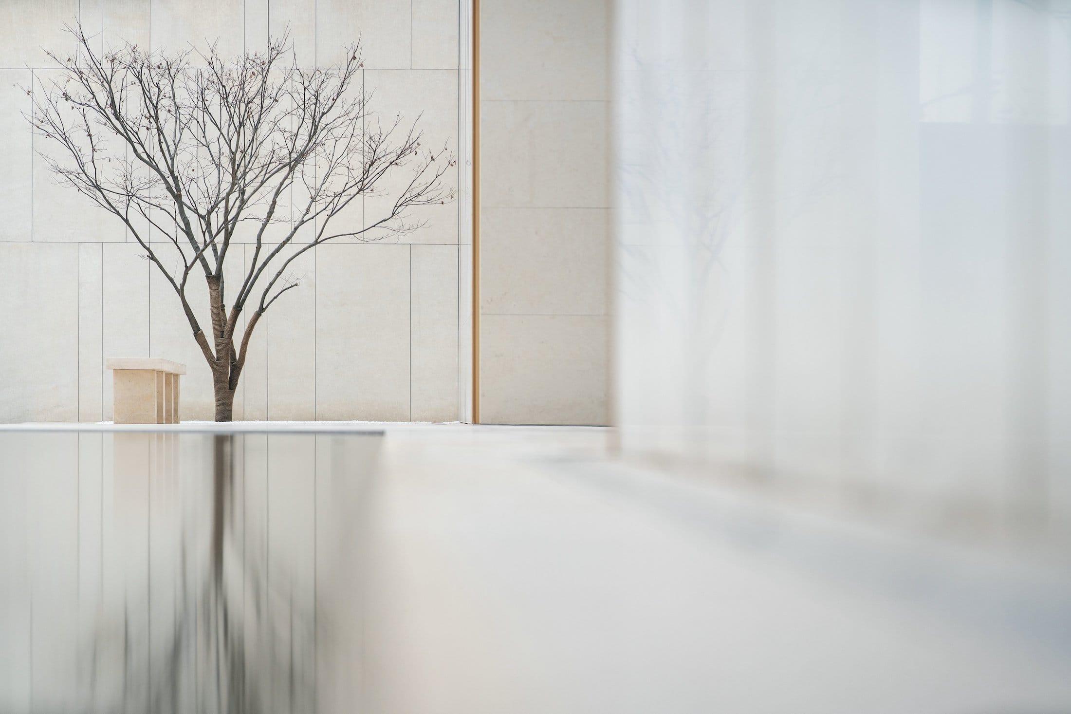 杭州大家生活艺术馆景观设计/ZSD卓时设计