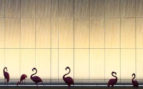 华润揭阳榕江悦府销售中心室内letou国际米兰下载/矩阵纵横