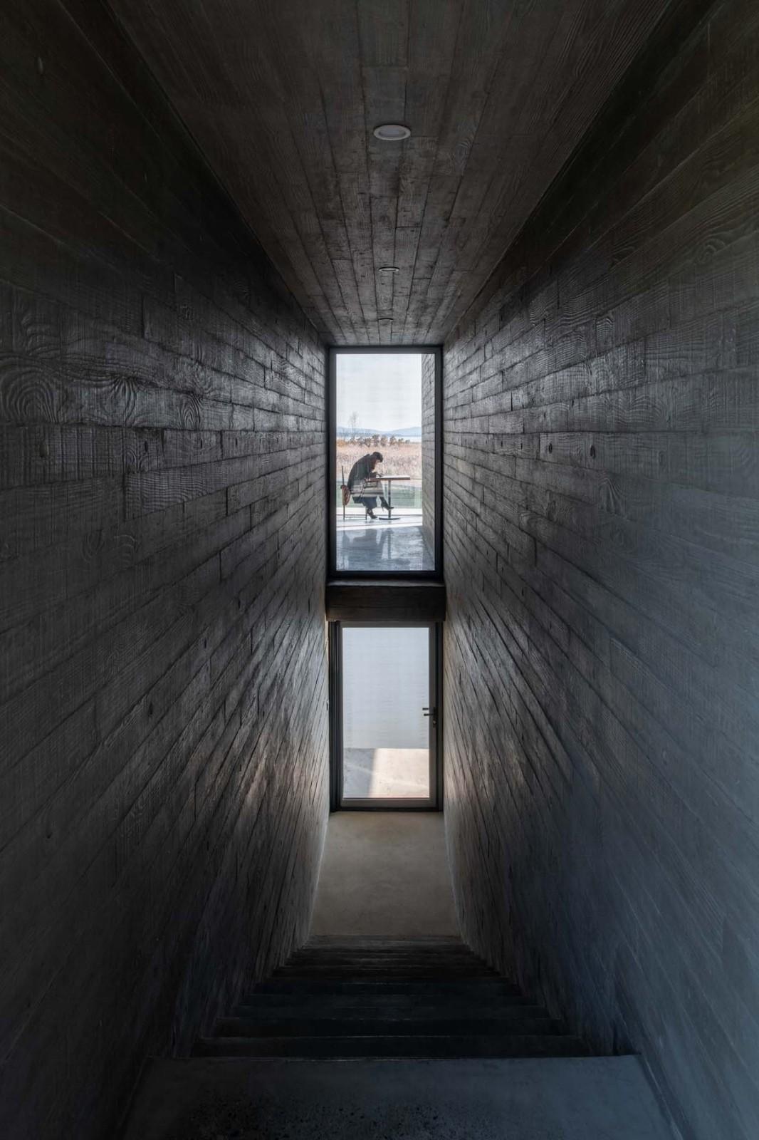 山东天鹅湖湿地公园景观廊及观鸟塔 / 迹·建筑事务所