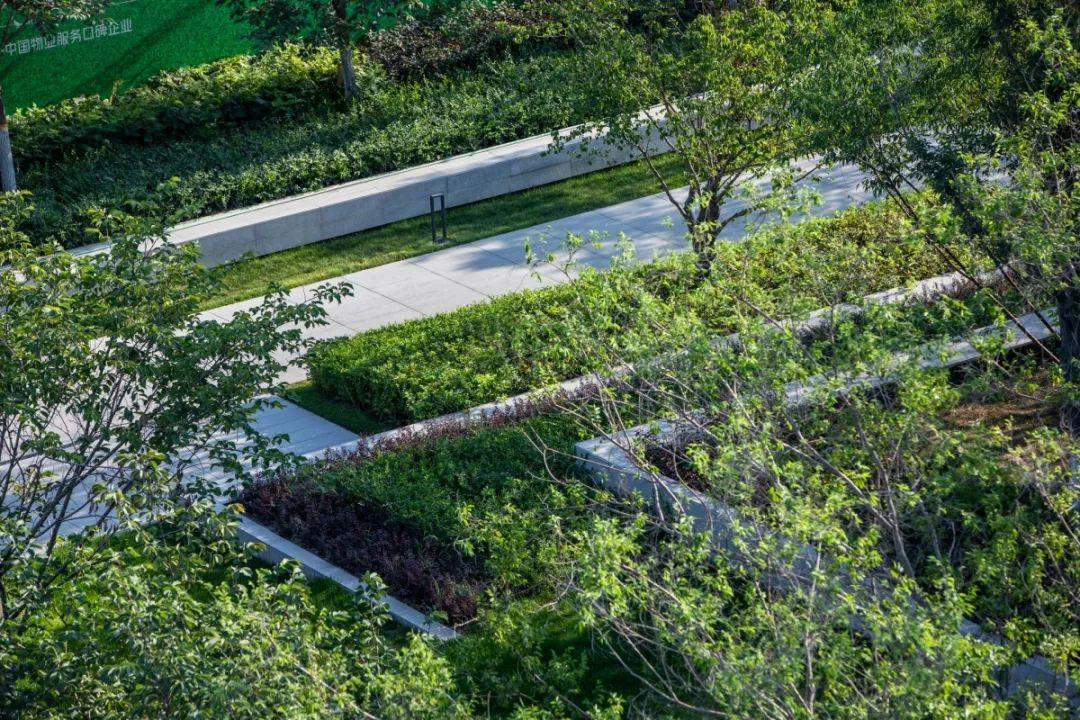 新疆万科·公园大道景观设计/新西林景观