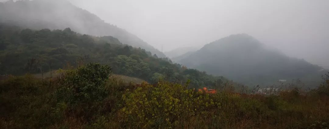 重庆南山云水山居景观设计/ 致澜景观