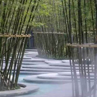 11-chengdu-poly-daguojing-zinialand