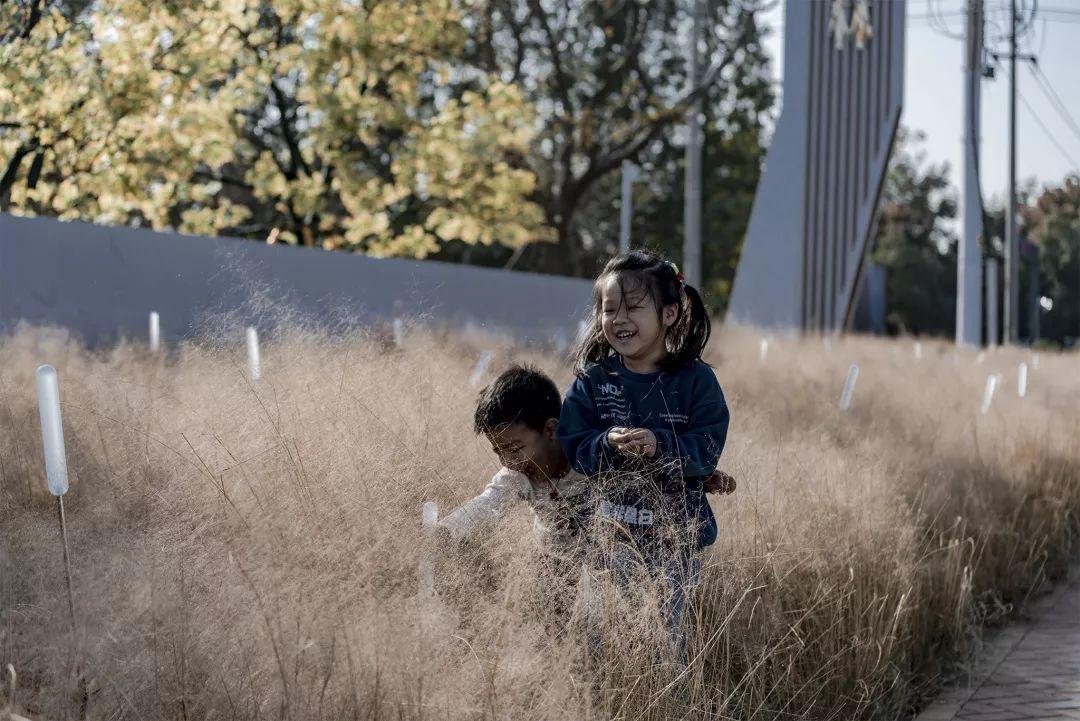 常州碧桂园•都市森林景观设计 / 魏玛景观