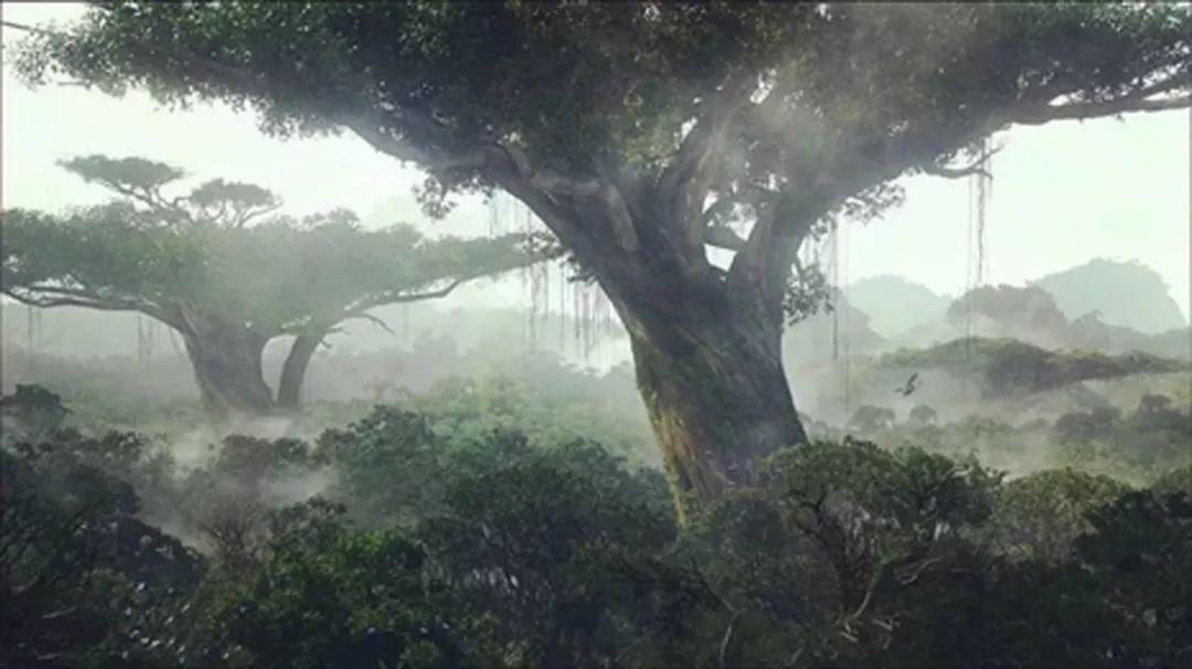 青岛万科北宸之光景观设计 / 天华景观