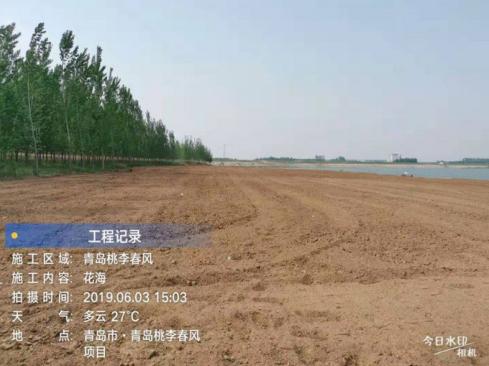 12-qingdao-bluetown-taoli-chunfeng-zsd