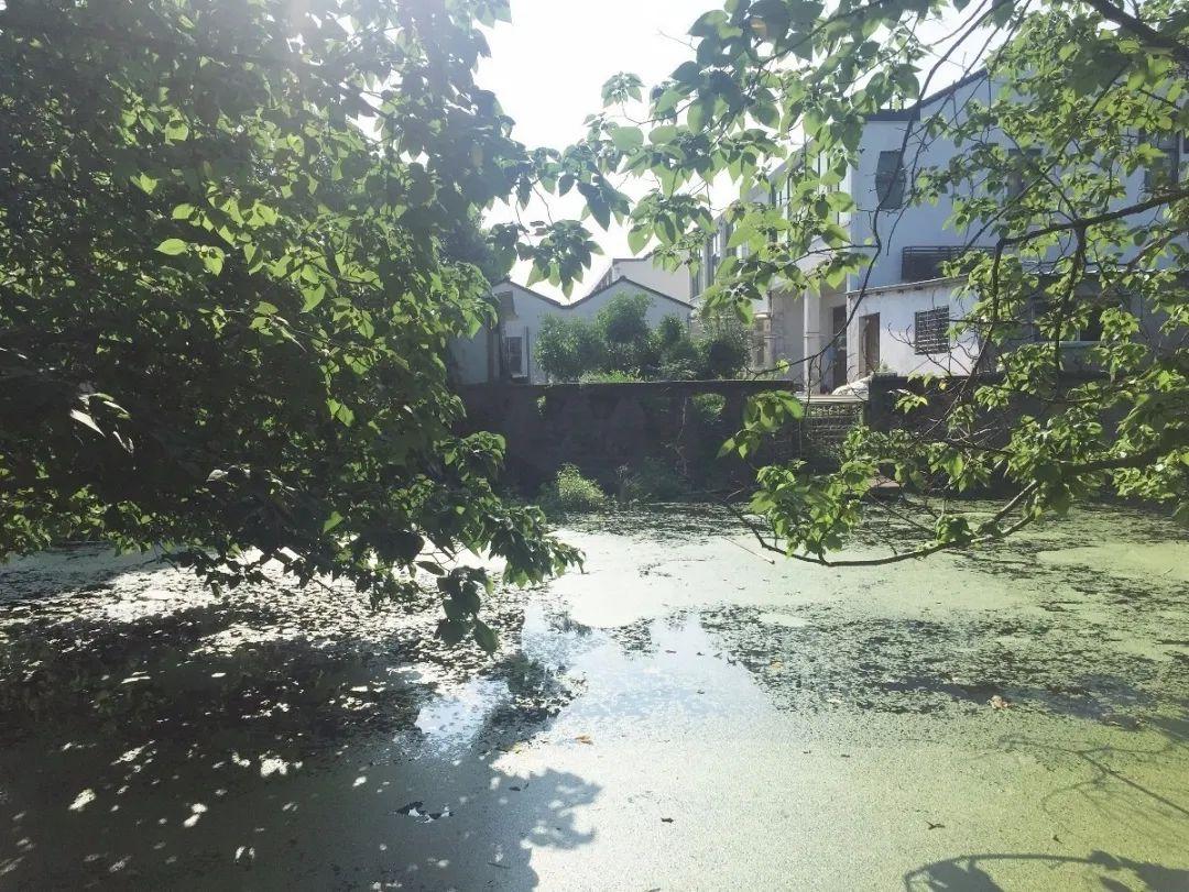 08-zhongxin-fenghuan-town-zhishancun-hezhan
