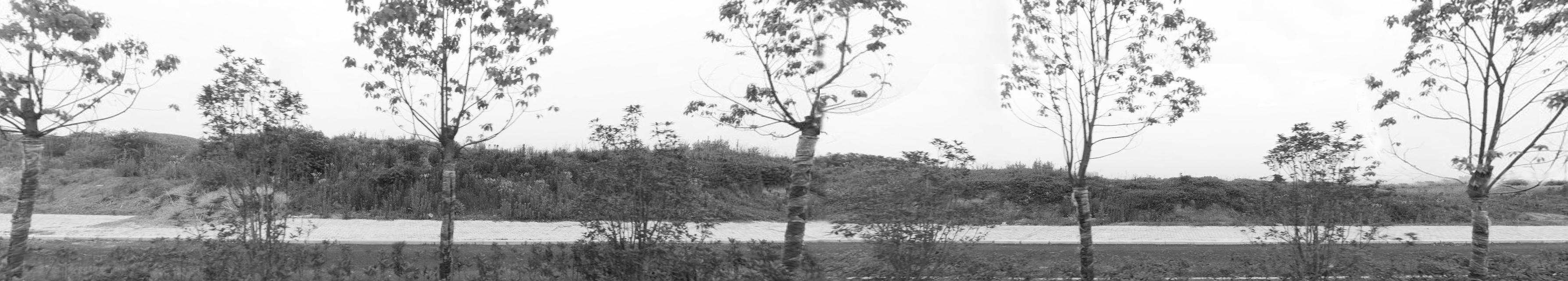 合肥金茂悦体验区 景观设计 / 墨刻景观