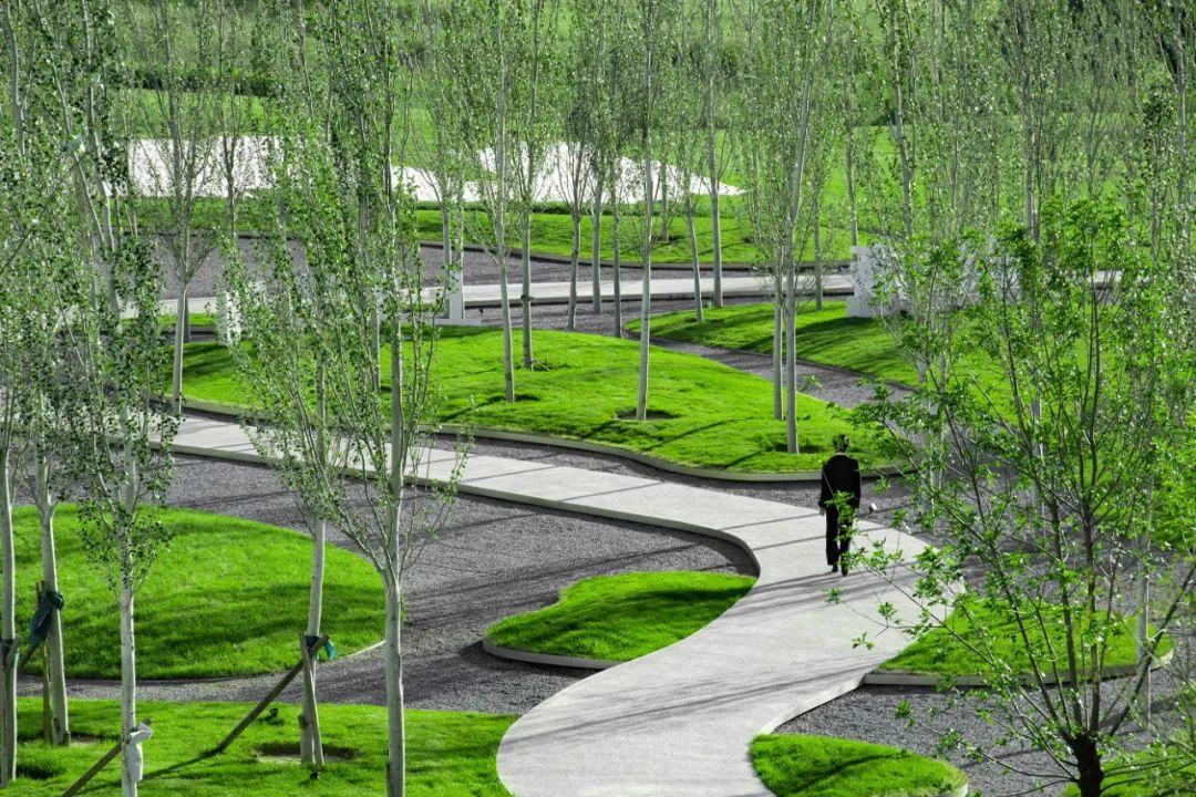 南海湖保利体育庄园 景观设计 /  水木清境