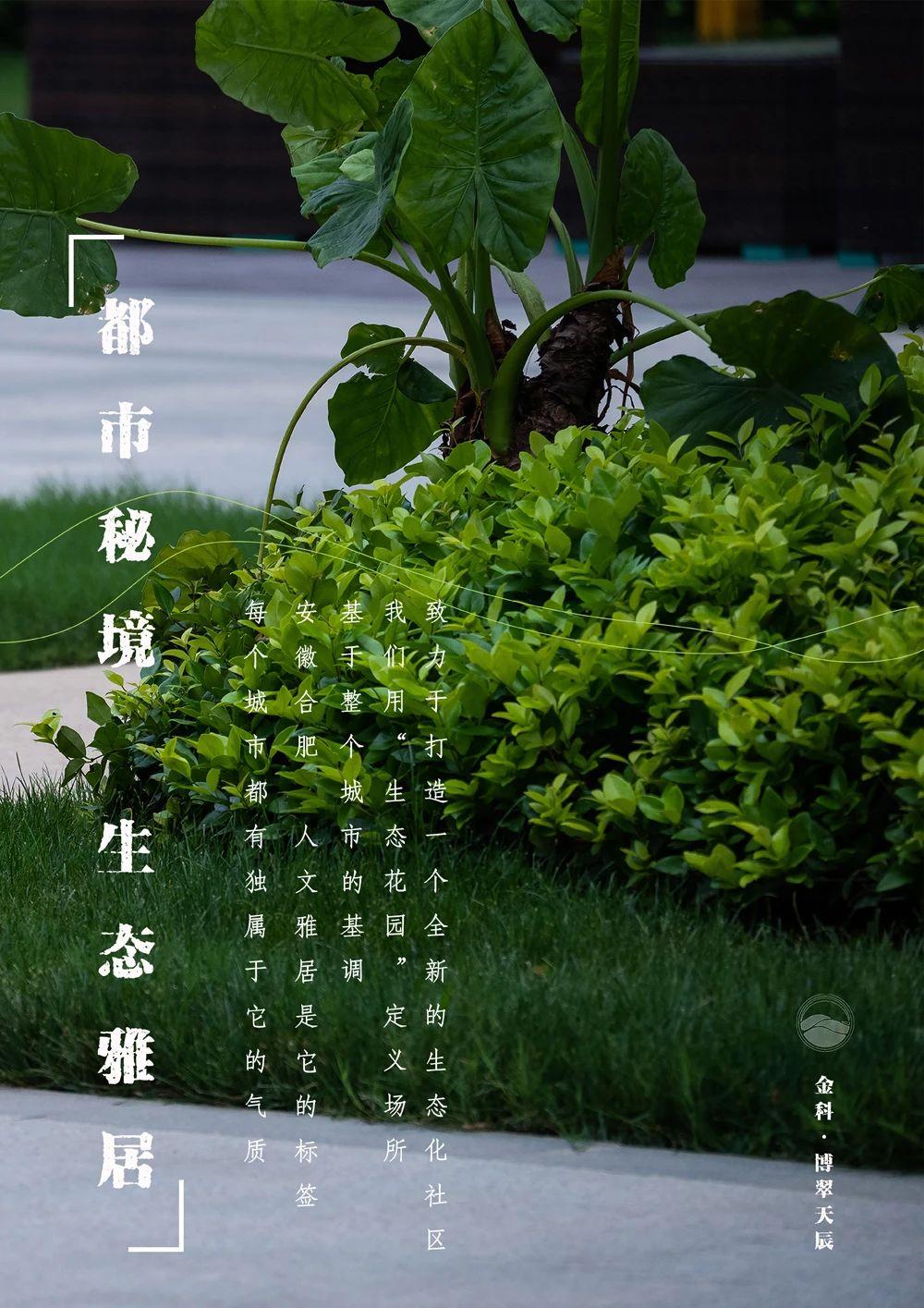 合肥金科 · 博翠天辰 景观设计 /  DDON笛东