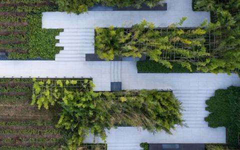 泰康·杭州径山竹茶园纪念园 景观letou国际米兰下载 /  澜道letou国际米兰下载